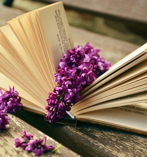 Książka w prezencie – najpiękniejsze cytaty