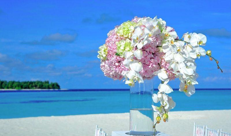Tropiki na weselu? To nam się podoba!